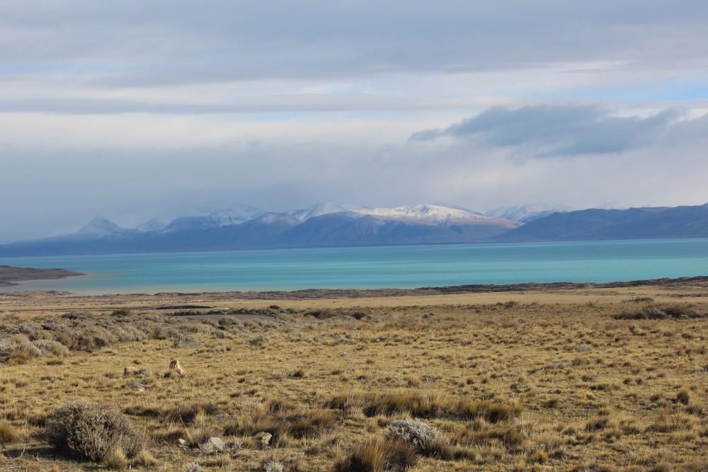 Aussicht-auf-eine-Lagune