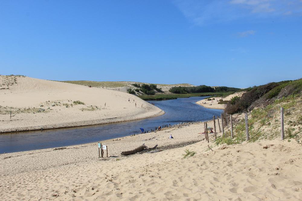 Fluss in Dünen