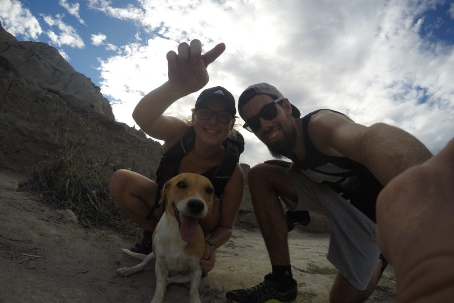 Hunde Selfie Graue Wüste Tatacoa