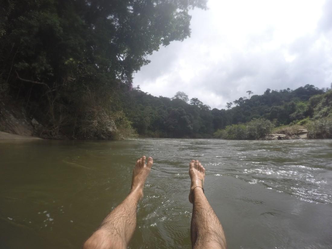 Fluss Dschungel Tubing