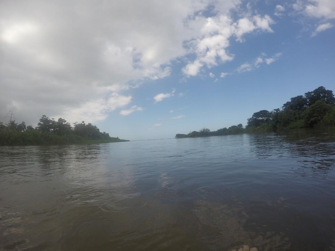 Fluss Palomino Dschungel