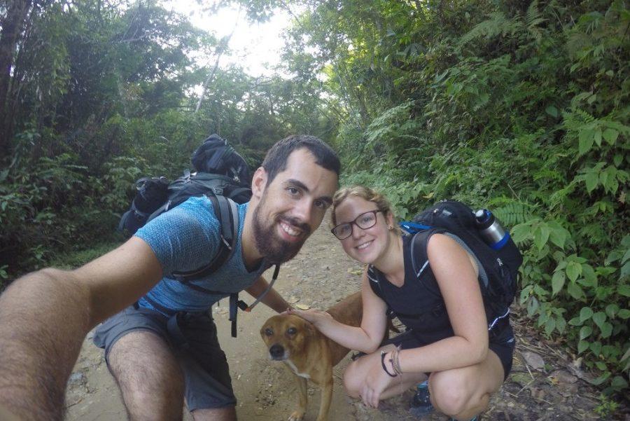Wandern Hund Leo Wanderhund