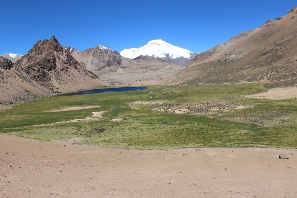 Sajama Nationalpark Natur Sajama Berg Gipfel Höchster Berg Boliviens Südamerika Wanderung  Ausblick Lagune