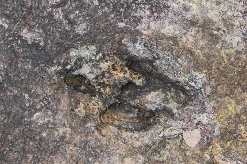 Torotoro Nationalpark Bolivien Südamerika Dinosaurier Jurassic Park Fußspuren Abdrücke