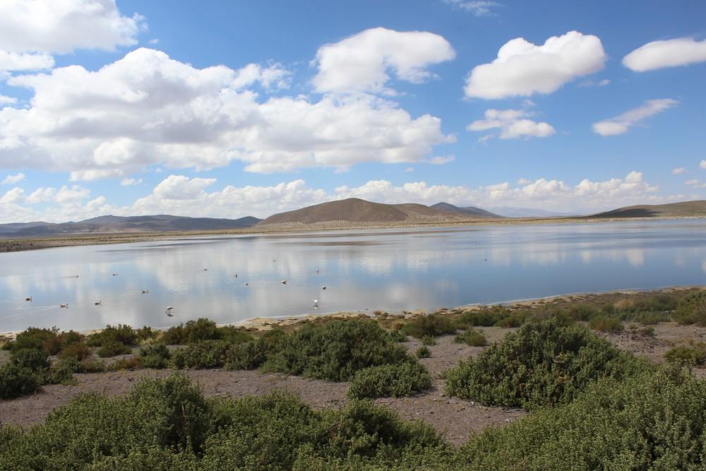 Lagune See Wasser Jeeptour Klares Wasser Unberühte Natur Bolivien Südamerika