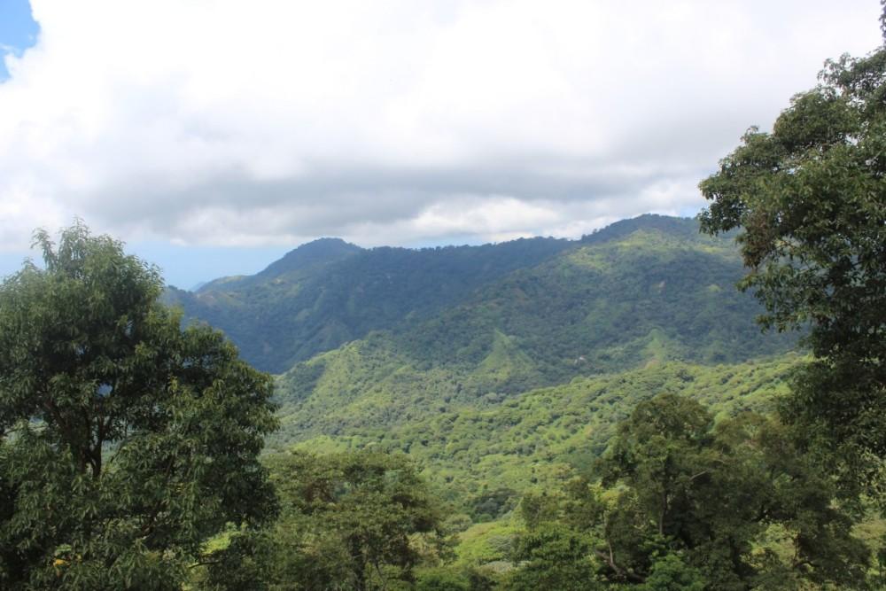 Wandern Aussicht Berge Dschungel