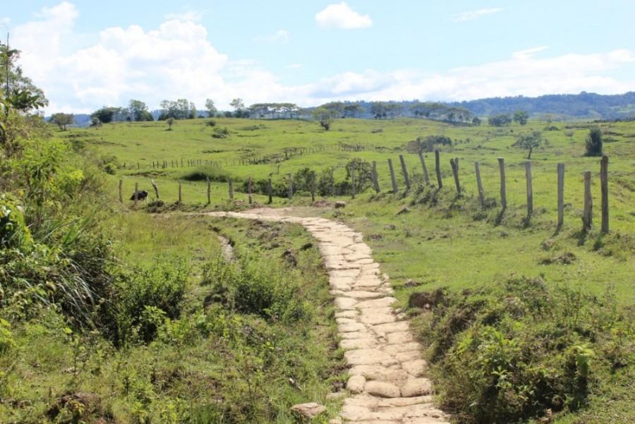 Natur Wandern Weg