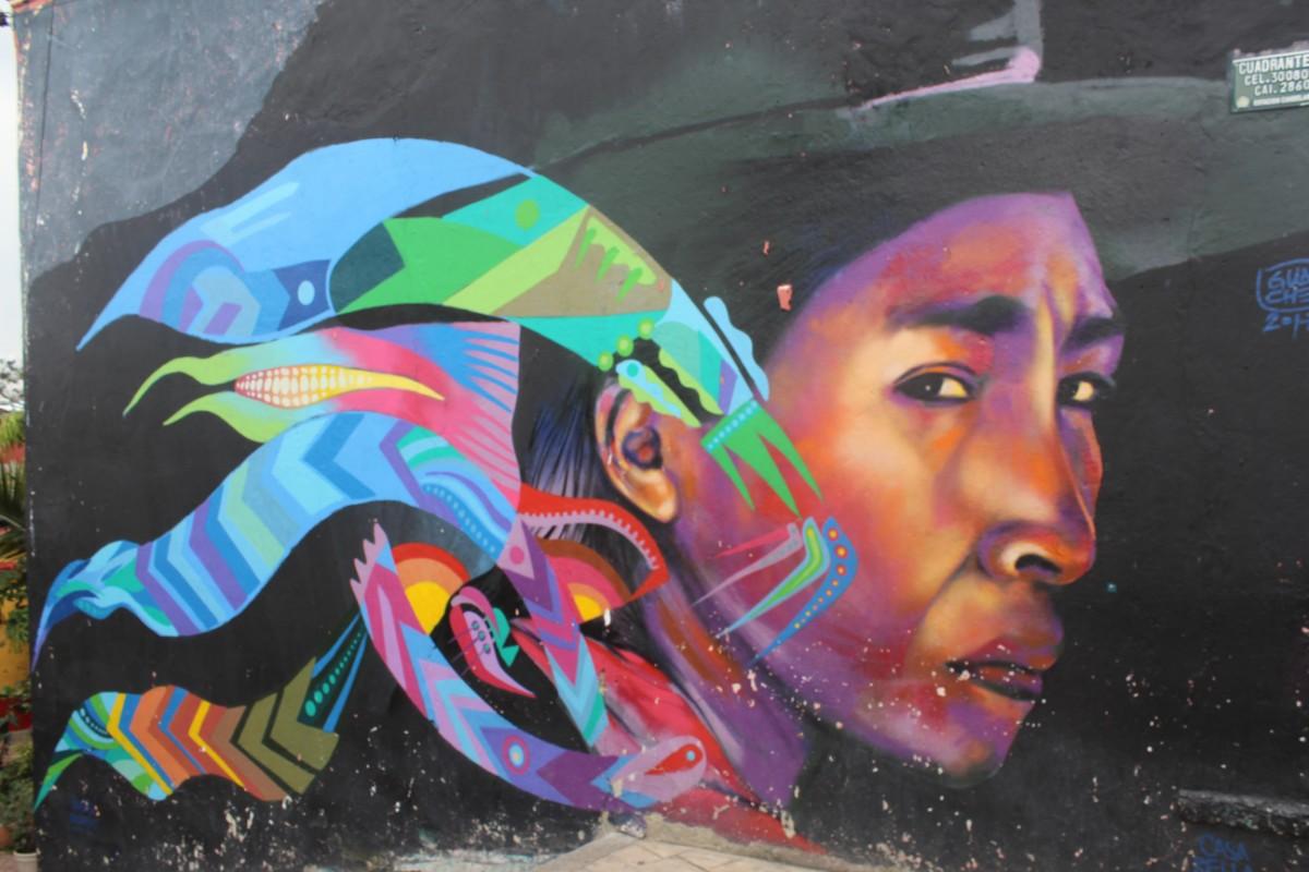 Graffiti Bogotá Dame Indigen Bunt