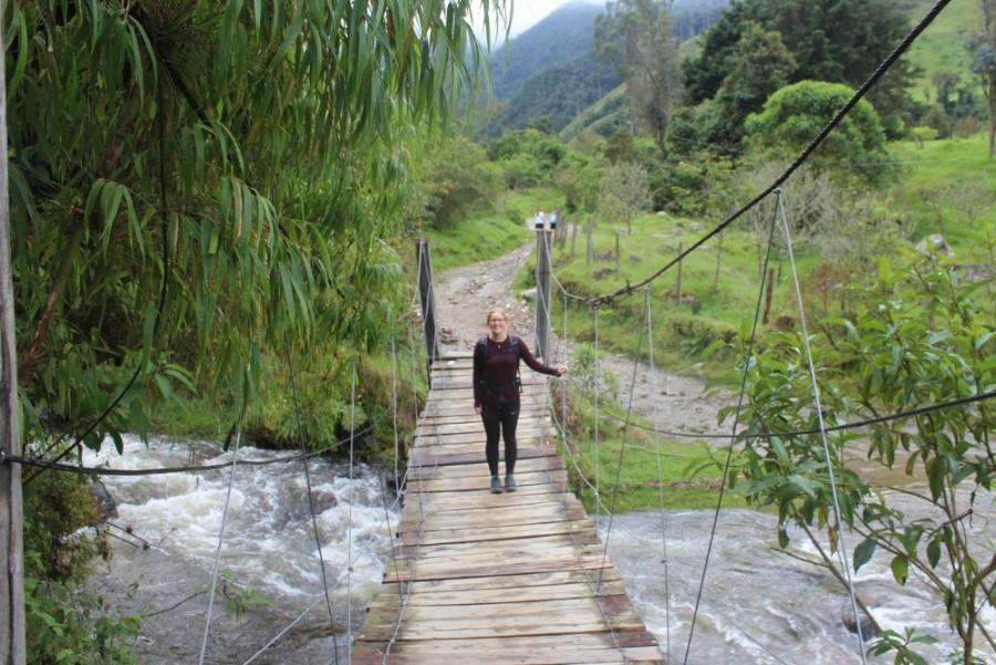 Brücke Wandern Fluss