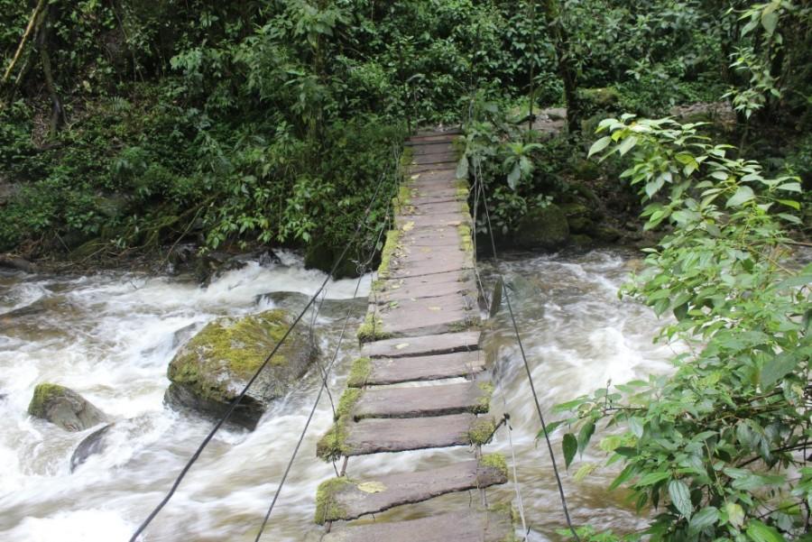 Abenteuer Wanderung Brücke Fluss