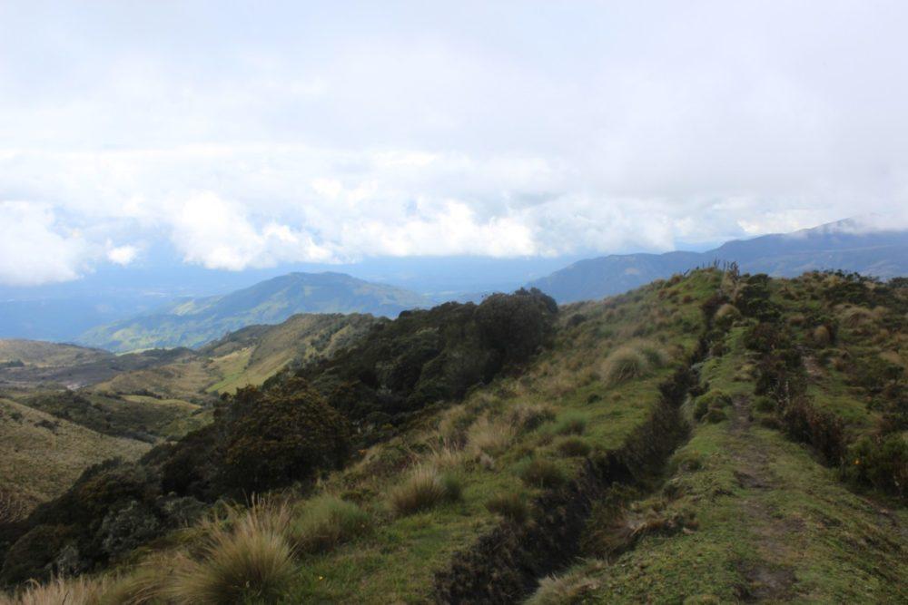 Natur Grün Pflanzen Berge
