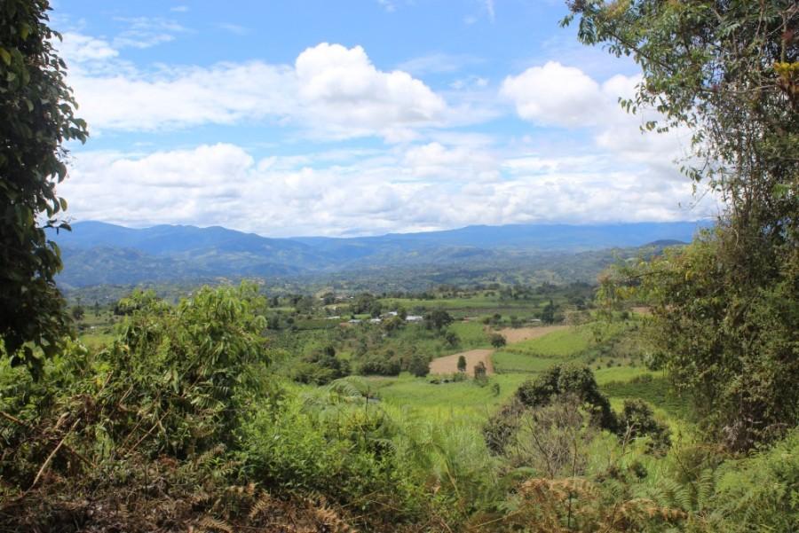 Natur Aussicht Grün Fruchtbar Blauer Himmel