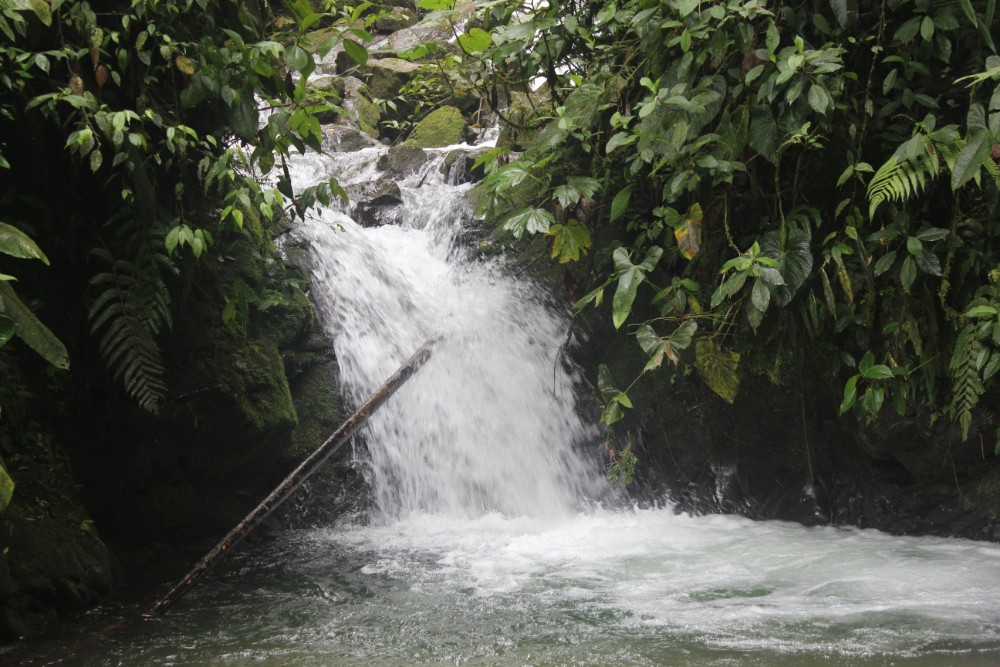 Wasserfall Mindo Natur Ecuador