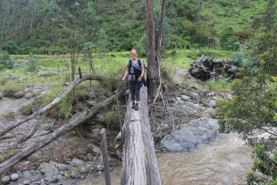 Quilotoa Loop Wandern Berge Natur Canyon Ecuador Südamerika Brücke Baumstamm