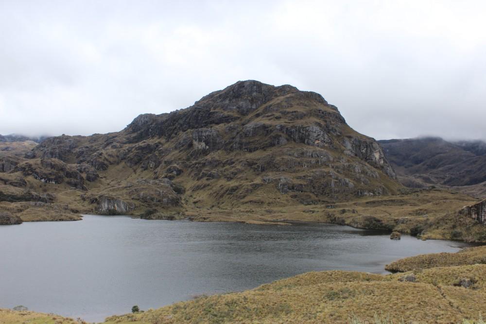 Cajas Nationalpark Natur Ecuador Südamerika Lagune Wasser Berg Gras