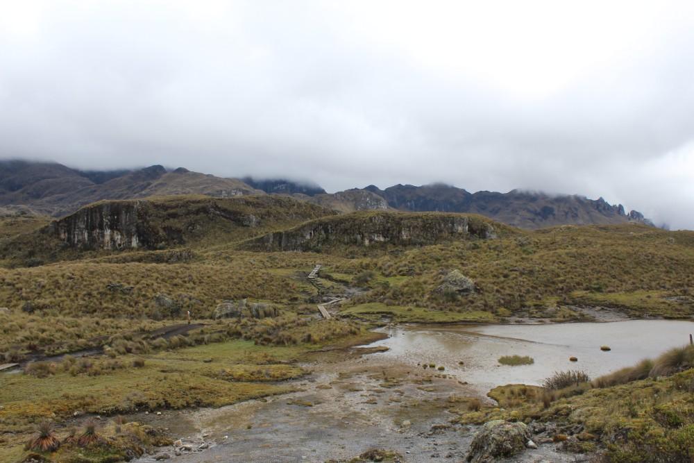Cajas Nationalpark Natur Ecuador Südamerika Lagunen Wasser