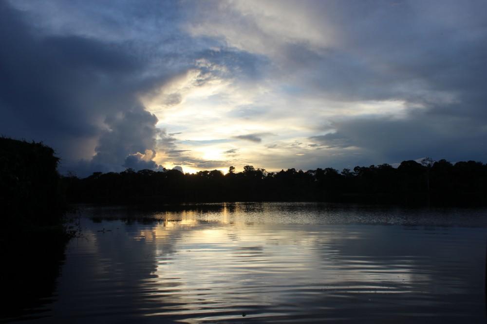 Amazonas Regenwald Peru Südamerika Natur Tiere Wildleben Sonnenuntergang Lagune