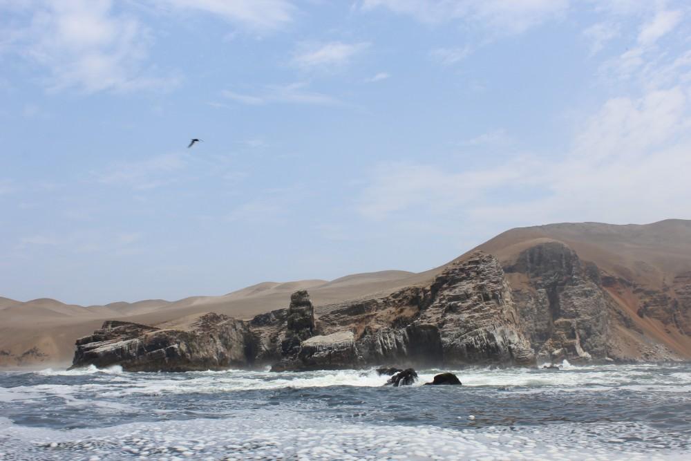 Lima Peru Südamerika Palominoinseln Wilde Tiere Natur Inseln
