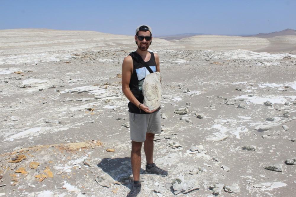 Huaccachina Ica Peru Südamerika Wüste Fossil Alt Tier Meer Zahn