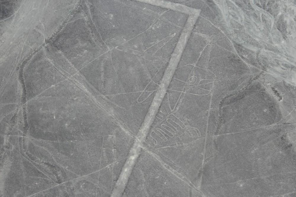 Nazca Peru Nazcalinien Flug Bilder Beeindruckend Südamerika