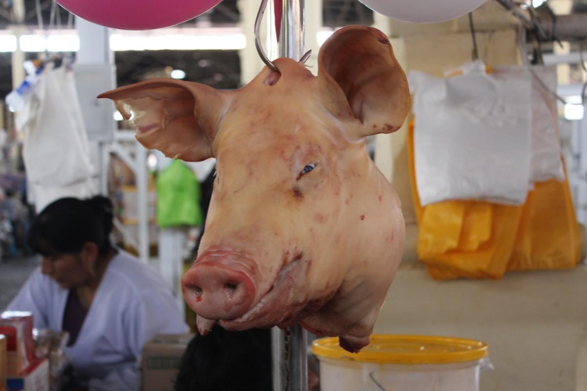 Cusco Peru San Pedro Markt Südamerika Schweinekopf Metzgerstand Fleisch Essen