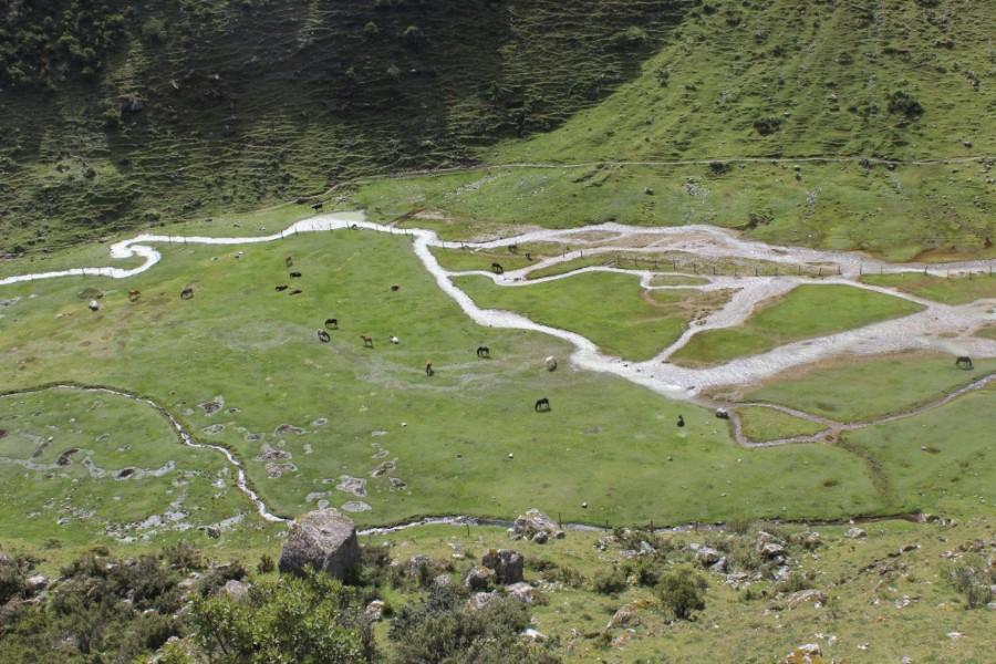 Salkantay Trek Wandern Peru Südamerika Machu Picchu Natur Aussicht Wildpferde Fluss