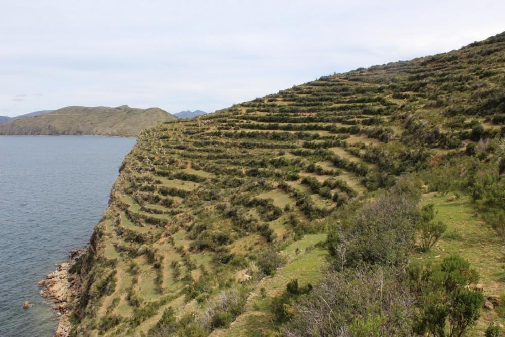 Isla de Sol Bolivien Copacabana Südamerika Insel Inka Natur Titicacasee