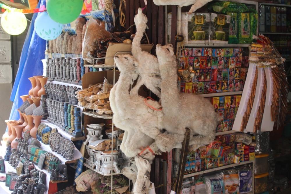 Lama Babys Tod Hexenmarkt La Paz Bolivien Südamerika