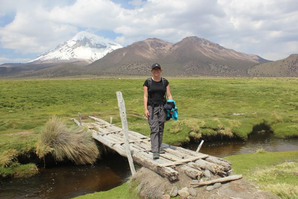 Sajama Nationalpark Natur Sajama Berg Gipfel Höchster Berg Boliviens Südamerika Wanderung Brücke
