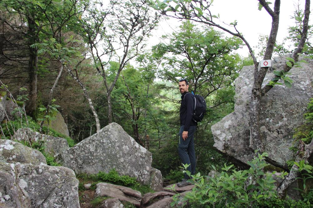 Wanderweg in der Natur