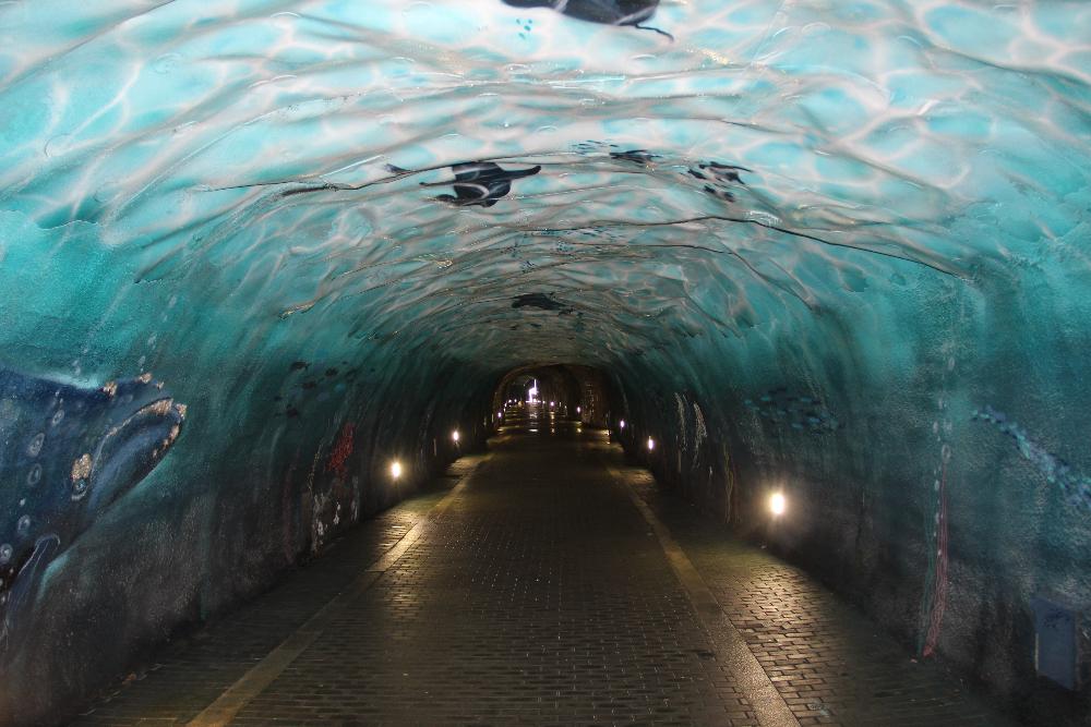 Unterwasserwelt Bemalung