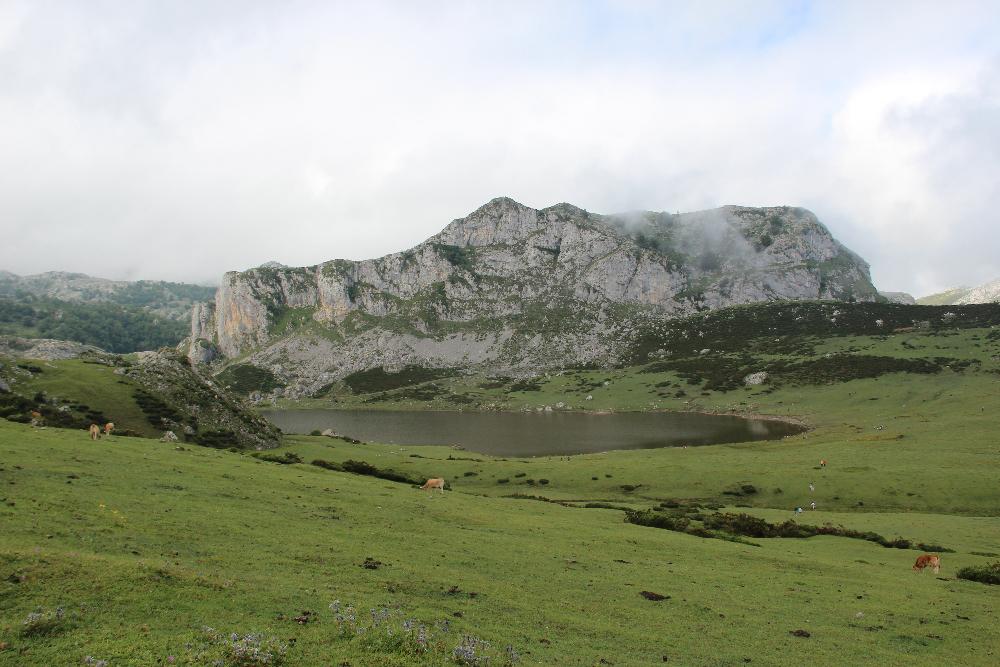 See Covadonga