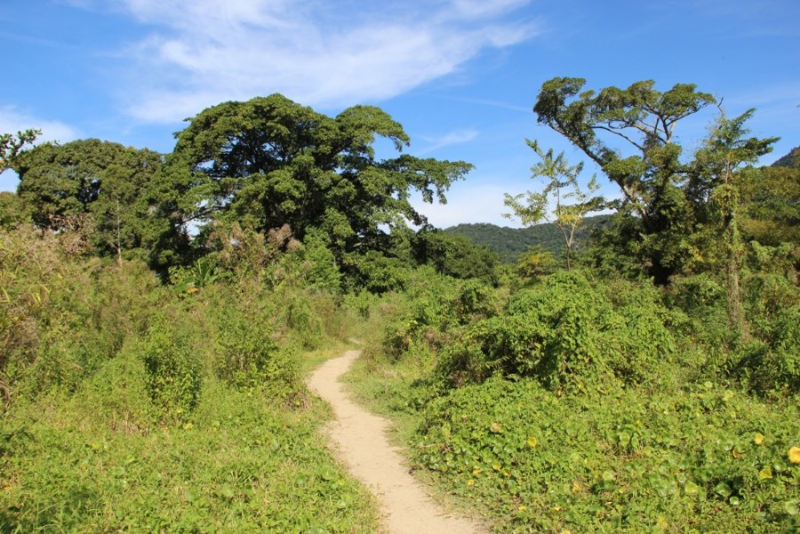 nationalpark-in-trinidad